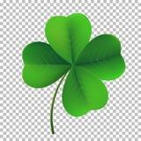 Icône de trèfle d'oxalide petite oseille de quatre-feuille de vecteur Symbole fower-poussé des feuilles chanceux de jour irlandai illustration stock