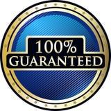 Icône garantie de cent pour cent illustration libre de droits