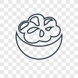 Icône linéaire de vecteur de concept de mangoustan d'isolement sur le Ba transparent illustration stock