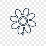 Icône linéaire de vecteur de concept de tournesol d'isolement sur le CCB transparent illustration stock