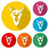 Icône principale de cerfs communs, icône de couleur avec la longue ombre Image stock
