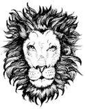 Icône principale de lion Photo libre de droits