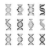 Icônes d'ADN Code de structure génétique, modèles de molécule d'ADN d'isolement sur le fond blanc Symboles génétiques de vecteur illustration stock