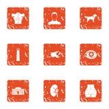 Icônes de promenade d'avenue réglées, style grunge illustration libre de droits