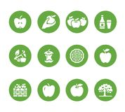 Icônes plates de glyph de pommes Cueillette d'Apple, festival de récolte d'automne, illustrations de cidre de fruit de métier Sig illustration de vecteur