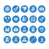 Icônes plates de glyph de vecteur d'urologie Urologue, vessie, reins, glandes surrénales, prostate Pictogrammes médicaux pour la  illustration libre de droits