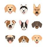 Icônes plates de tête de chien de style Visages de chiens de bande dessinée réglés Illustration de vecteur d'isolement Image stock