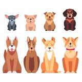 Icônes plates de vecteurs d'animal de race de bande dessinée mignonne de chiens réglées illustration libre de droits