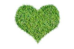 Icône écologique de coeur d'herbe verte Photo libre de droits