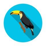 Icône brésilienne de toucan dans le style plat d'isolement sur le fond blanc Symbole de pays du Brésil Image libre de droits