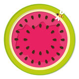 Icône colorée de pastèque d'isolement sur le blanc Photos stock