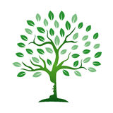 Icône curative d'arbre Photos stock