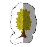 icône d'arbre d'autocollant de vert de chaux belle Images stock