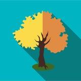 Icône d'arbre d'automne, style plat Photographie stock libre de droits