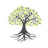 Icône d'arbre de feuille de personnes Photo libre de droits