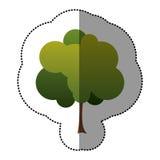 icône d'arbre de timbre de couleur belle Image libre de droits