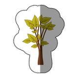 icône d'arbre de vert de chaux belle Photo stock