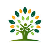 Icône d'arbre de vie de famille Photo stock