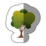 icône d'art d'arbre de timbre de couleur Image stock