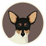Icône d'avatar de style de Toy Fox Terrier Geometric de collection de chien ronde Photo libre de droits