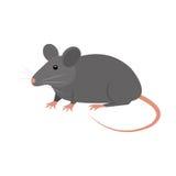 Icône d'isolement par animal de rat Image libre de droits