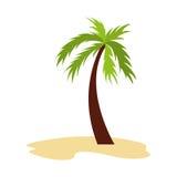 Icône d'isolement par Palm Beach d'arbre Photos stock