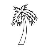 Icône d'isolement par Palm Beach d'arbre Images stock