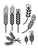 Icône de blé Photographie stock libre de droits