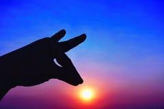 Icône de ciel de coucher du soleil et de main de silhouette Photographie stock libre de droits