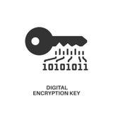 Icône de clé de cryptage de Digital Photo stock