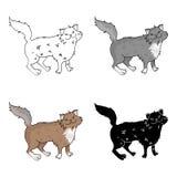 Icône de Forest Cat de Norvégien dans le style de bande dessinée d'isolement sur le fond blanc Le chat multiplie l'illustration c Images libres de droits