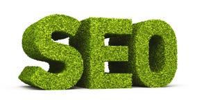 Icône de formation de feuille de Seo Image stock