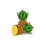 Icône de fruit d'ananas Photos libres de droits