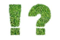 Icône de marque écologique de question et d'exclamation d'herbe verte Photos libres de droits