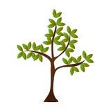 Icône de nature d'usine d'arbre Photographie stock libre de droits