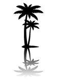 Icône de palmier d'isolement sur le fond blanc Photographie stock libre de droits
