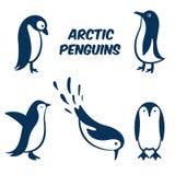 Icône de symbole d'oeufs de pingouin Images libres de droits