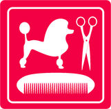 Icône de toilettage avec le chien, les ciseaux et le peigne de caniche Photographie stock libre de droits