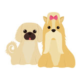 Icône mignonne de bande dessinée de chien Image stock