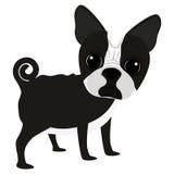 Icône mignonne de bande dessinée de chien Images stock