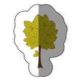 icône naturelle d'arbre d'autocollant de vert de chaux Photo libre de droits
