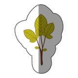 icône naturelle d'arbre de vert de chaux Image libre de droits