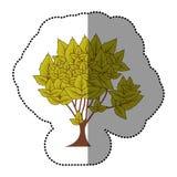 icône naturelle d'arbre de vert de chaux Images libres de droits