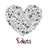 Icône Nuts comme coeur Images stock