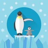 Icône plate Antarctique de pingouin Photos libres de droits