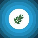 Icône plate d'isolement de feuilles L'élément de vecteur de feuille d'acacia peut être employé pour l'acacia, poussent des feuill Image libre de droits