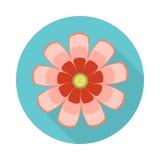 Icône plate de fleur de cosmos avec l'ombre Photos stock