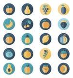 Icône plate de fruits avec la longue ombre illustration de vecteur