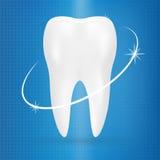 Icône réaliste de stomatologie d'affiche de dent sur un fond Illustration réaliste de vecteur Image stock