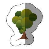 icône stylisée d'arbre d'autocollant Photographie stock libre de droits